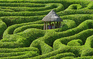 environmental data management can be a maze