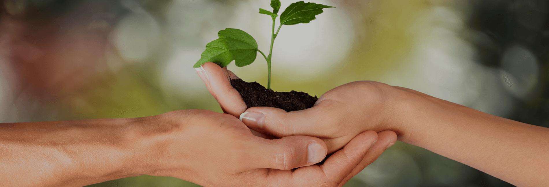 era-environmental-environmental-resources.png