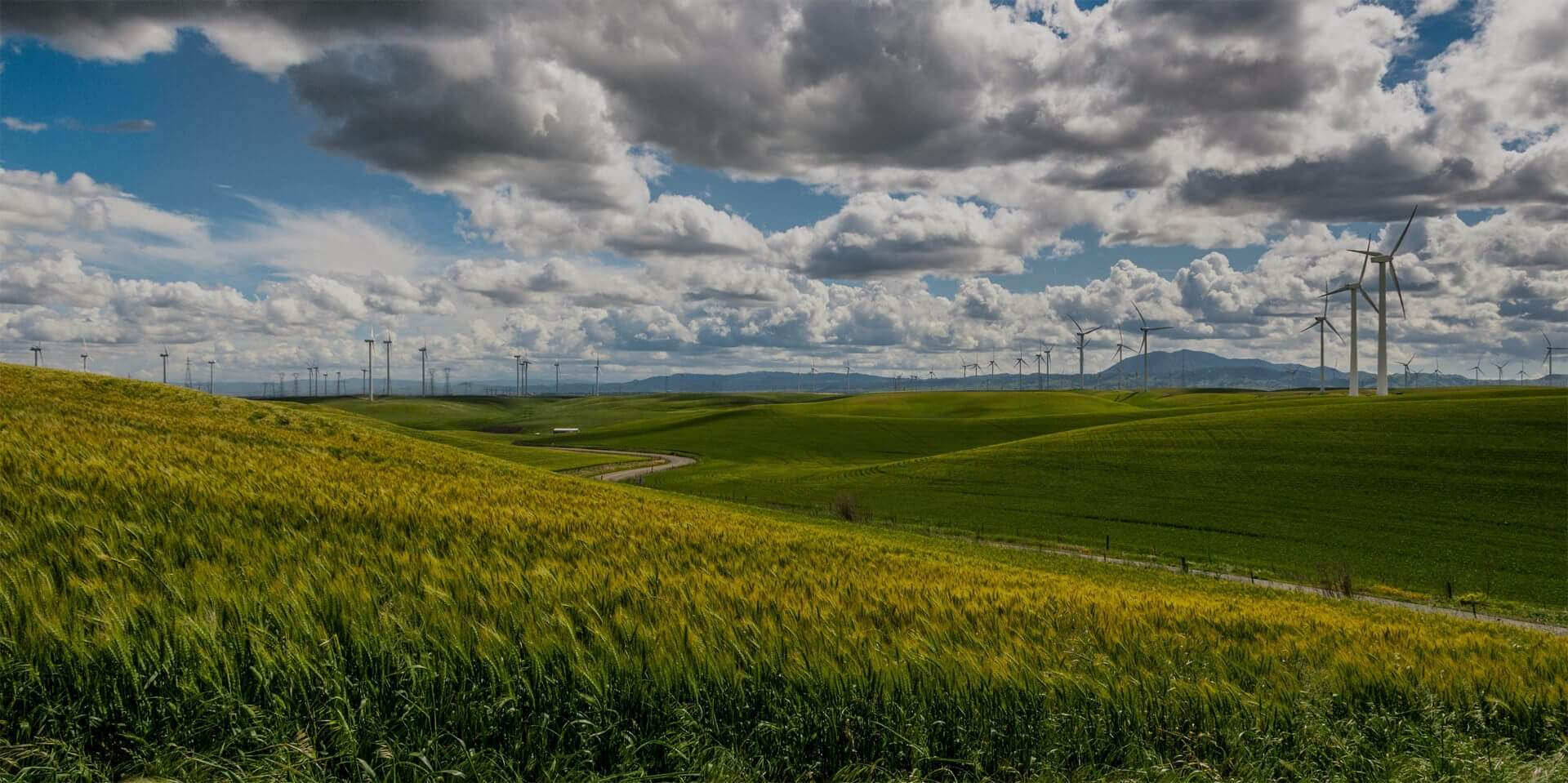 managing-energy-tracking-utilities-sustainability-ERA-Environmental
