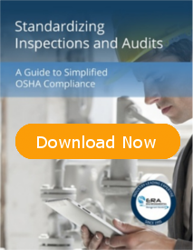 Standardizing Inspections and Audits eBook Cover
